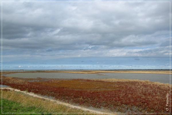 Потіївська ділянка. Узбережжя Тендрівської затоки