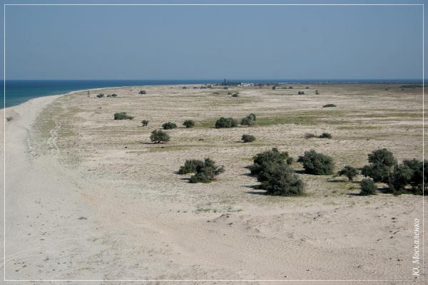 Ландшафт західної (широкої) частини Тендри