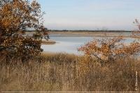Солоноозерна ділянка. Озеро Мокре-Довге