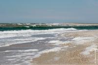 Морське узбережжя кореневої частини острова Тендра