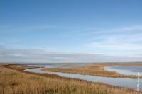 Кутова частина Тендрівської затоки